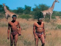 Bushman Walk in Namibia